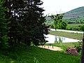 R20, Moldova - panoramio (11).jpg