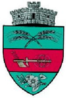 ROU SV Dragoiesti CoA.png