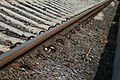 Rails (3059126575).jpg