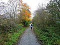 Railway path along the Tyne - geograph.org.uk - 1038462.jpg