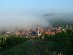Randersacker on a foggy summer morning