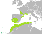 Range of Mediterranean Tree Frog