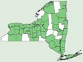 Ranunculus recurvatus var recurvatus NY-dist-map.png