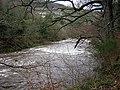 Rapids Near Hazelbank - geograph.org.uk - 143002.jpg