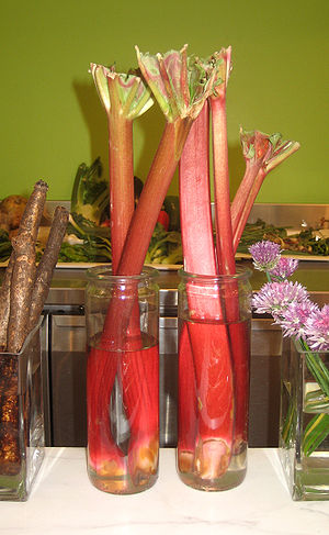 Rhubarb in Boston.