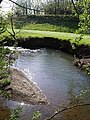 River Lew - geograph.org.uk - 431416.jpg