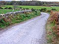 Road leading to Lochside and Loch of Park - geograph.org.uk - 623556.jpg
