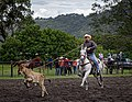 Rodeo Event Calf Roping 31.jpg