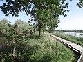 Sentier au Romelaëre