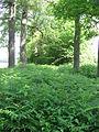 Roskam, Sint Odiliënberg 004.JPG