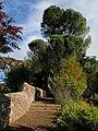 Rougemont Gardens, Exeter - geograph.org.uk - 1019000.jpg