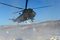 Royal Navy Sea King Helicopter Carrying out Arctic Trials MOD 45155013.jpg