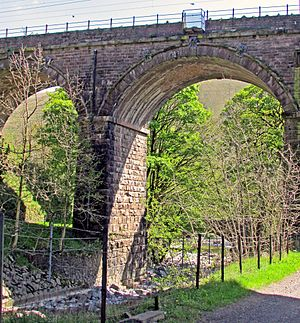 Borrow Beck - Borrow Beck (left) running under the 1840's-built Borrow Beck Viaduct on the West Coast Main Line shortly before joining the River Lune, visible in the background