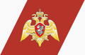 Russian National Guard racing stripe.png