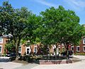 Rutgers University College Avenue campus with trees and dormitories.jpg