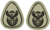 SANDF Rank Insignia WO1 embossed badge.png