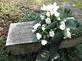 Saalfeld Friedhof Bombenopfer 2.JPG