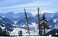 Saanenmöser - Plani - Rellerli - panoramio (40).jpg