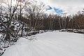 Saint Cloud (Waite Park) Quarry Park and Nature Preserve in Winter (23900739340).jpg