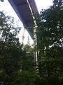 Saltwater State Park Bridge.jpg