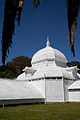 San Francisco Conservatory of Flowers-20.jpg