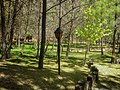 Santiago nl.jpg