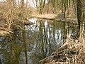 Schillerbach-24-03-2010 347.jpg