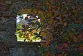 Schloss Hof-9749.jpg