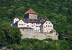 Schloss Vaduz (2009).jpg