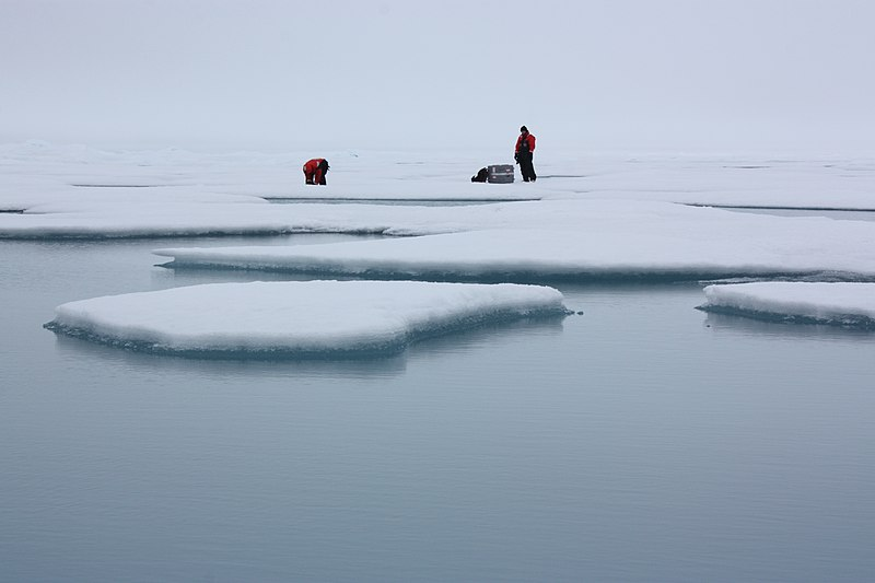 File:Sea Ice Survey (5931304247).jpg
