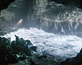 Sea Lion Caves-4.jpg