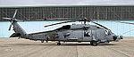 Seahawk (5083571382).jpg
