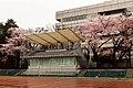 Seikei University (05).jpg