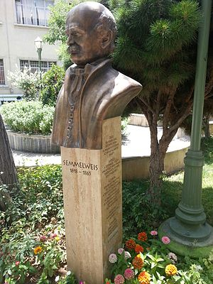 Ignaz Semmelweis - Semmelweis statue at the University of Tehran