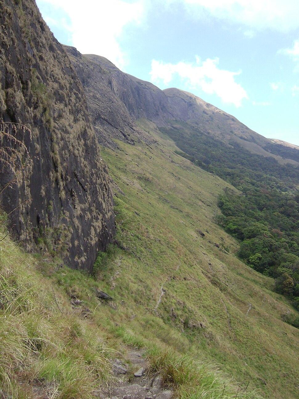 Shola-grass-mountain-Grass HillsNP