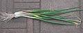 Sint Jansui (Allium fistulosum var. bulbifera).jpg