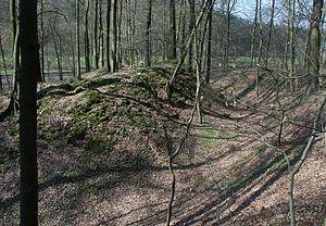 Sinzigburg mit Zentralhügel und dem inneren Graben