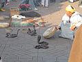 Snake Charmers, Djeema el Fna, Marakech (2242327933).jpg
