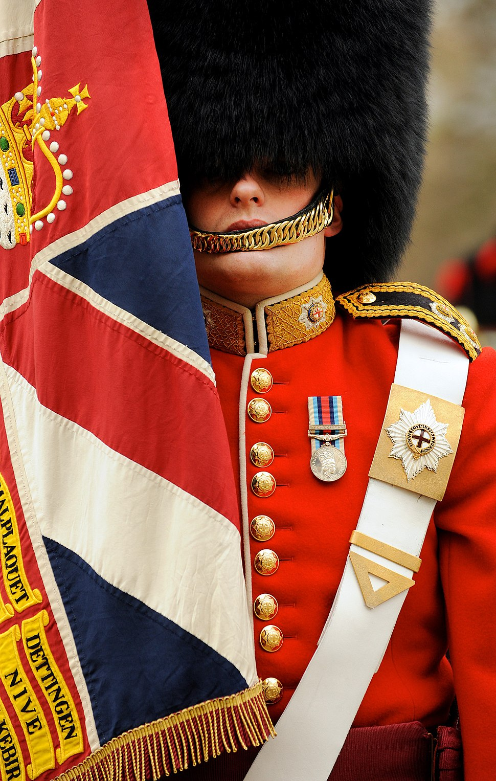 Soldier from No7 Company Coldstream Guards With Regimental Colours MOD 45152569