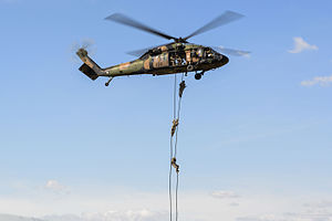 Soldiers from the Australian Army 2nd Commando Regiment fast rope from an S-70A-9 Black Hawk from the Australian Army 171st Aviation Squadron during exercise Talisman Sabre 2015.jpg