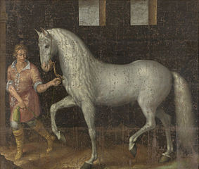 Spanish Warhorse Captured at the Battle of Nieuwpoort by Lodewijk Günther of Nassau-Siegen from Archduke Albert of Austria, given to Stadtholder Maurice of Orange