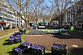 Stadelhoferplatz - Neuanpflanzung durch gsz 2012-03-2012-03-15 10-49-42.JPG