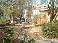 Stadtgarten Erfurt 2.JPG