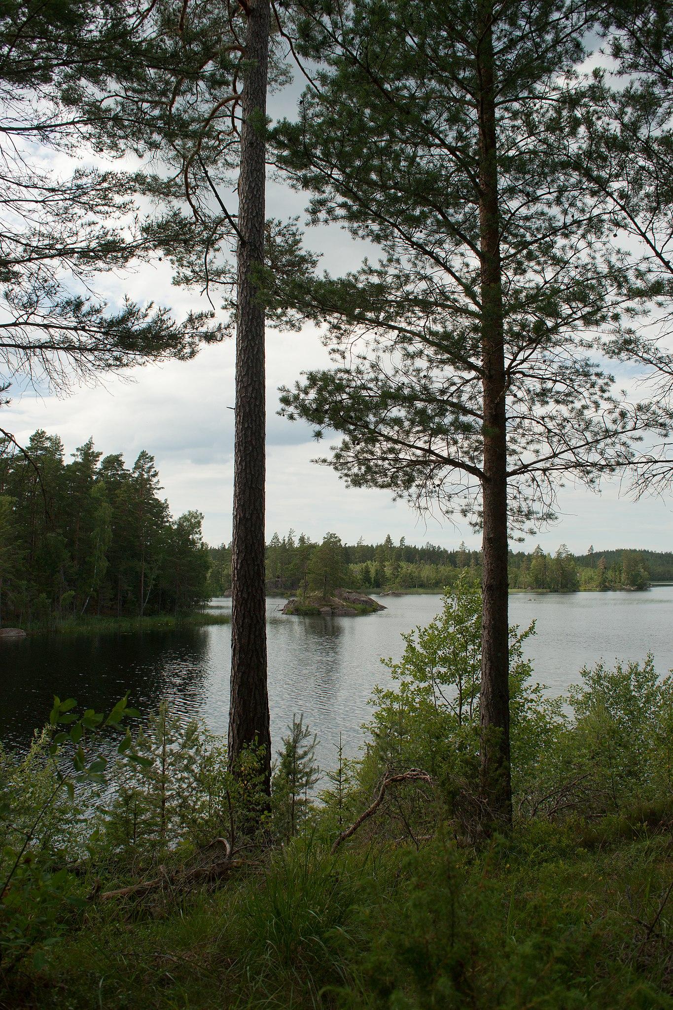 Göra på dejt i ankarsrum - Stensjön Romantisk Dejt - Dating sweden södra ljunga