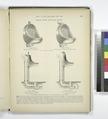 Stevens' Patent Ventilating Urinals (NYPL b15260162-487538).tiff