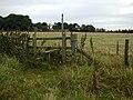 Stile, High Baxton's Farm - geograph.org.uk - 45129.jpg