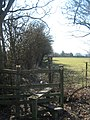 Stile and High Weald Landscape Trail heading towards Swan Street - geograph.org.uk - 1743124.jpg