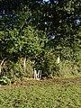 Stile in field boundary - geograph.org.uk - 246365.jpg