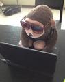 Stuffed gorilla toy.png
