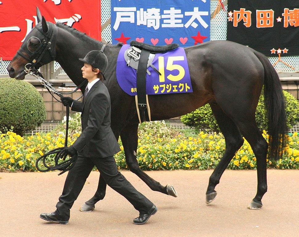 Subject (horse) 20080420P1
